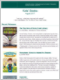 Kids Book Recommendation Newsletter