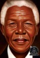 Nelson Mandela / words and paintings by Kadir Nelson.