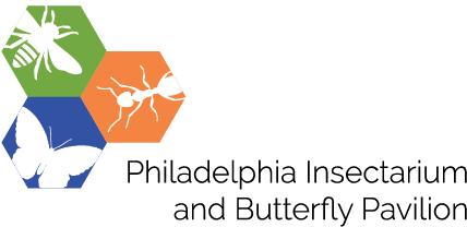 Philadelphia Insectarium & Butterfly Pavilion